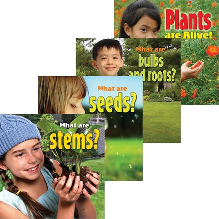 Plants Close-Up 4-Pack