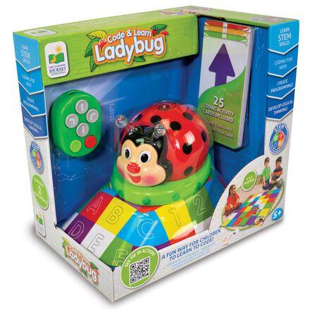 Code & Learn: Ladybug