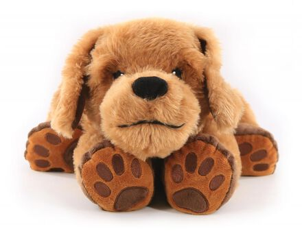 Théo, le chien de thérapie