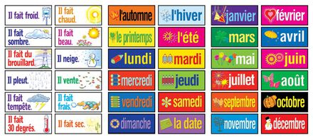 French Essential Vocabulary Cards