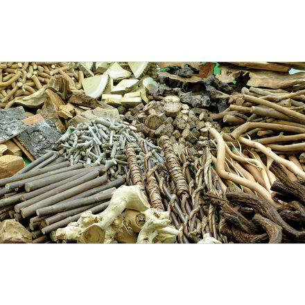 Natural Wood Treasure Pack