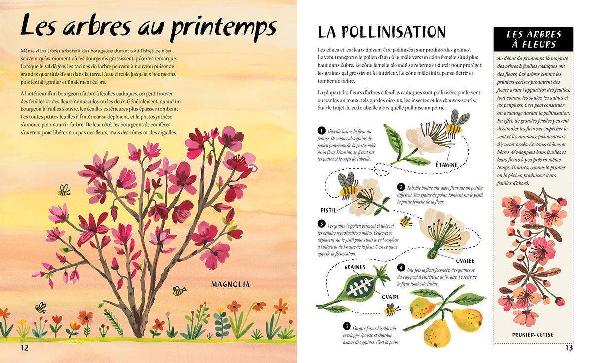 En pleine nature : Les arbres