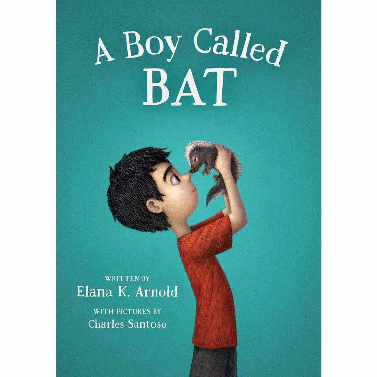A Boy Called Bat 6-Pack