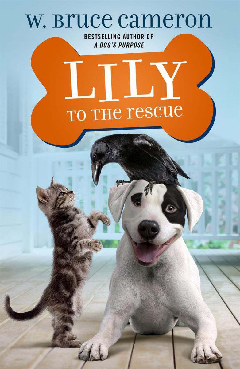 Lily to the Rescue