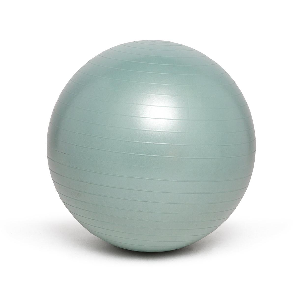 Weighted Balance Ball - Silver 65cm