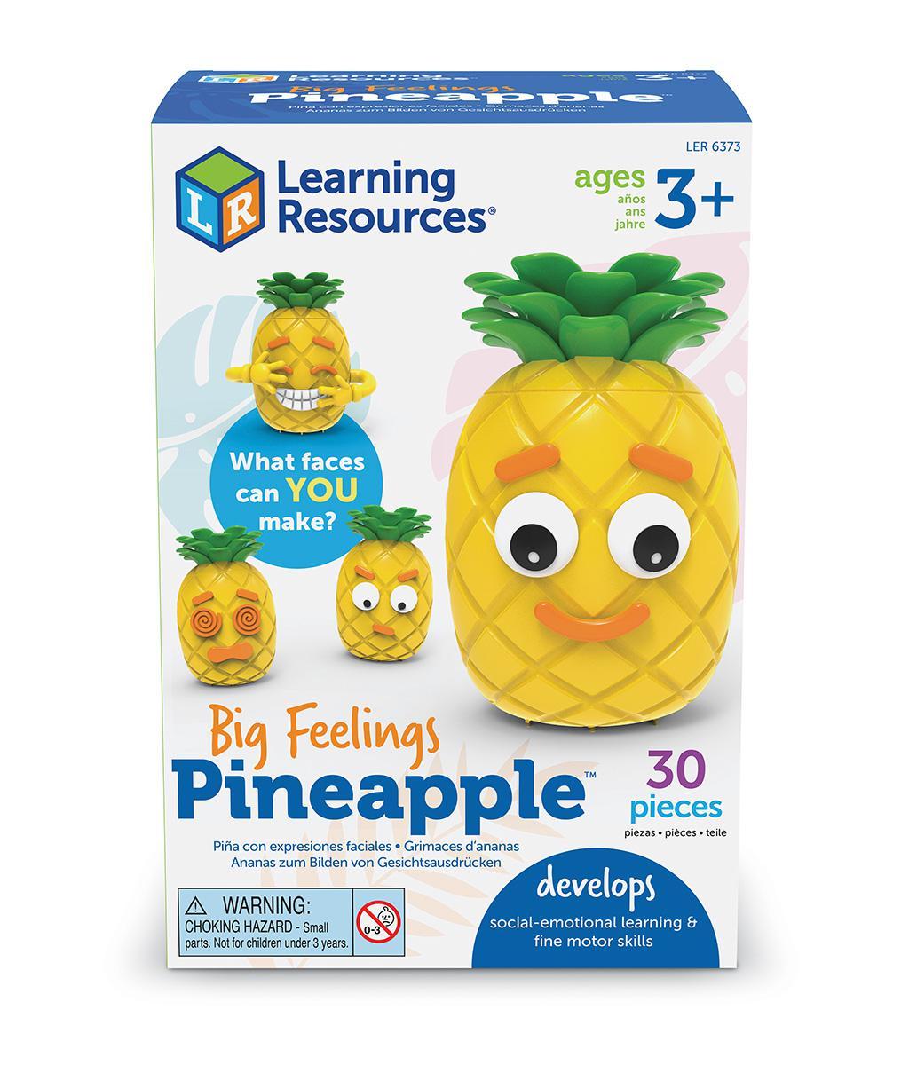 Big Feelings Pineapple