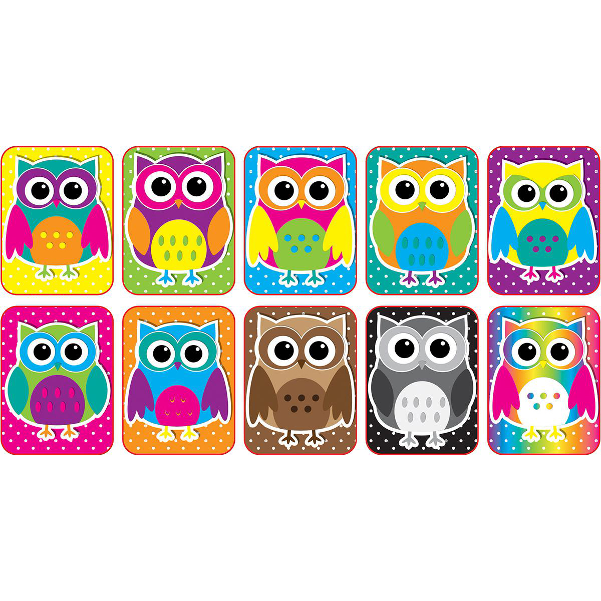 Mini Whiteboard Erasers: Colourful Owls