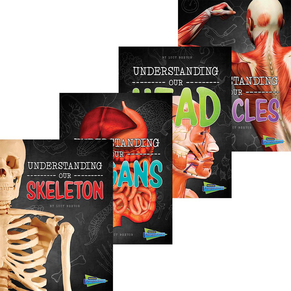 Capstone: Brains, Body, Bones! 4-Pack