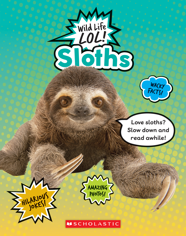 Wild Life LOL! Sloths