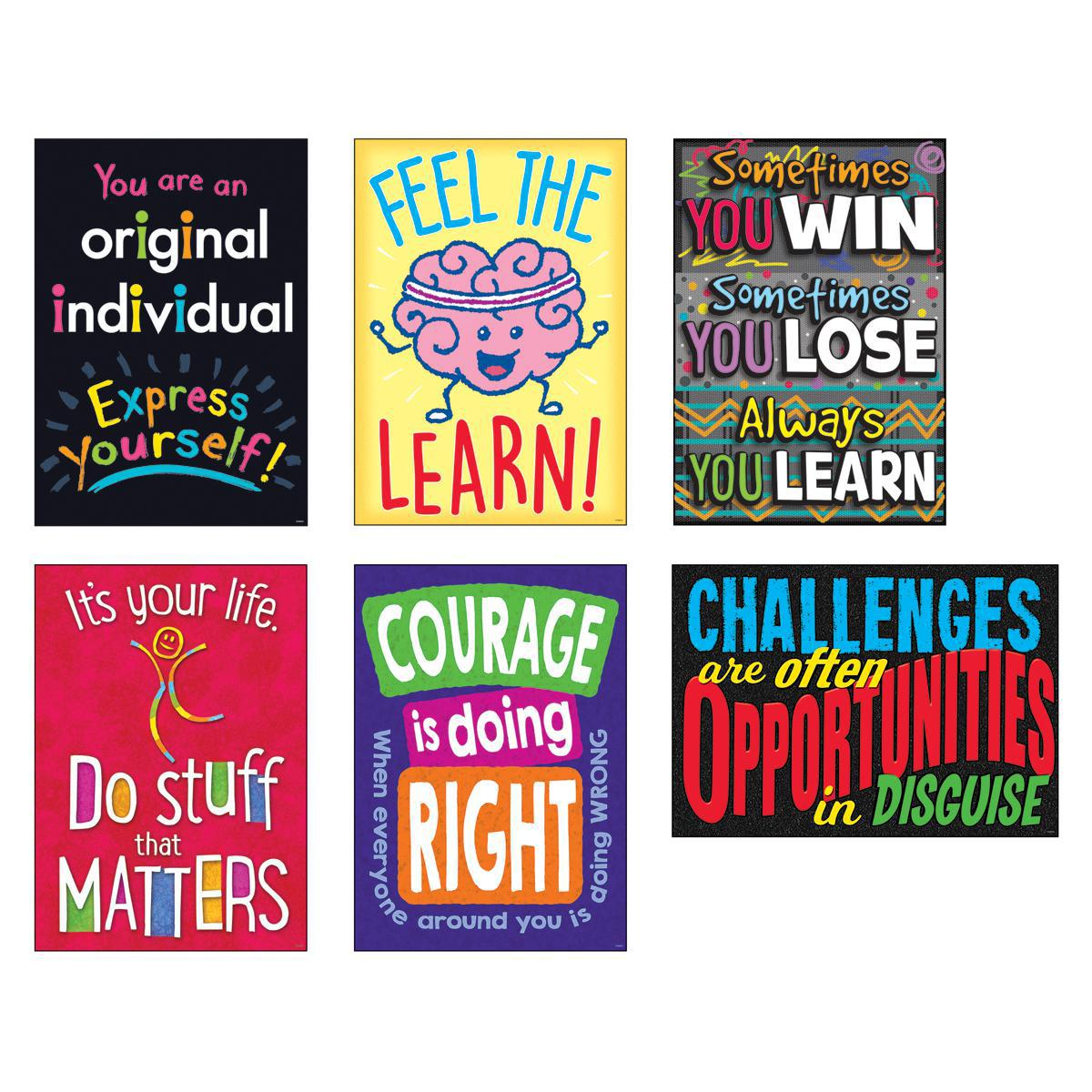 Argus® Life Lessons Poster Combo Pack