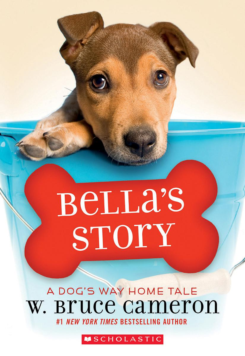 Bella's Story: A Dog's Way Home Tale