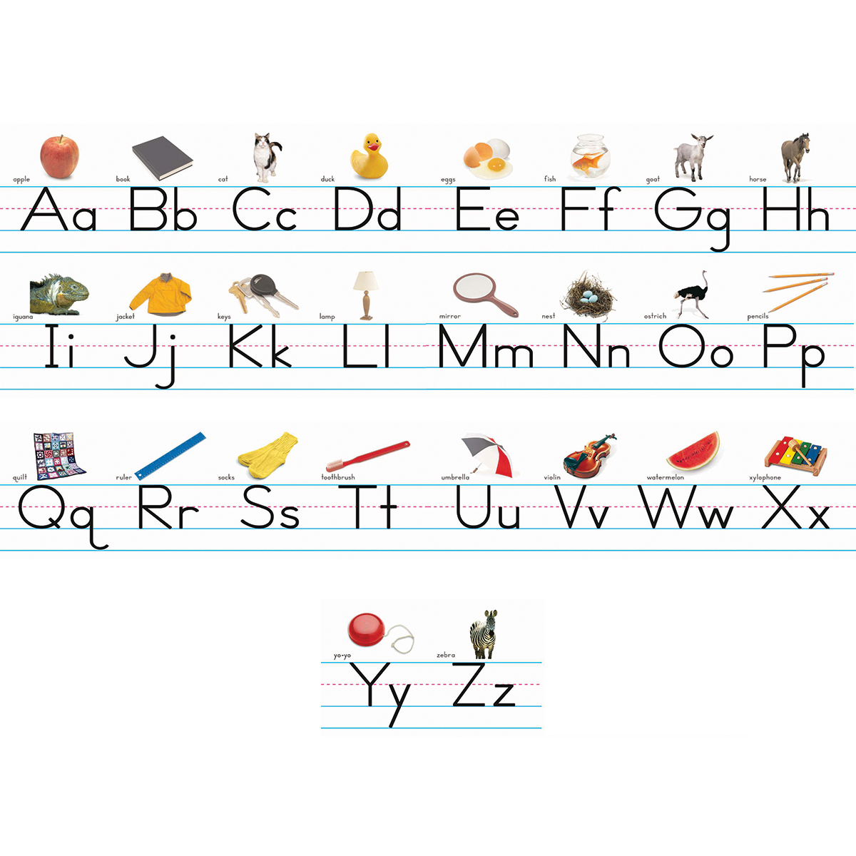 Alphabet Lines: Traditional Manuscript