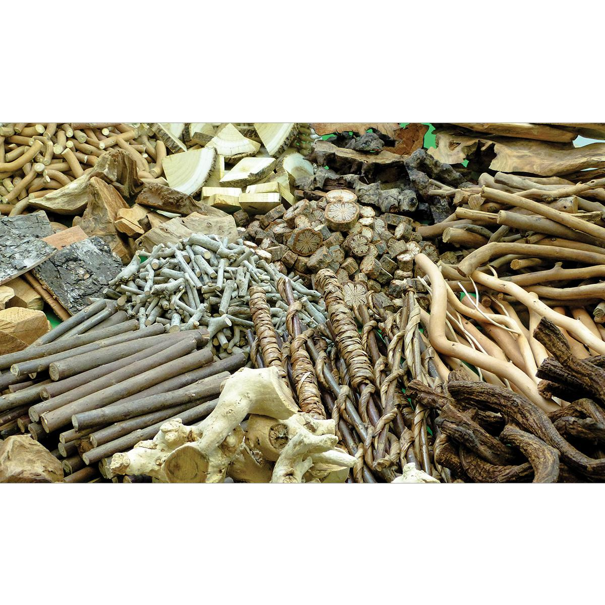 Natural Wood Treasure Pack