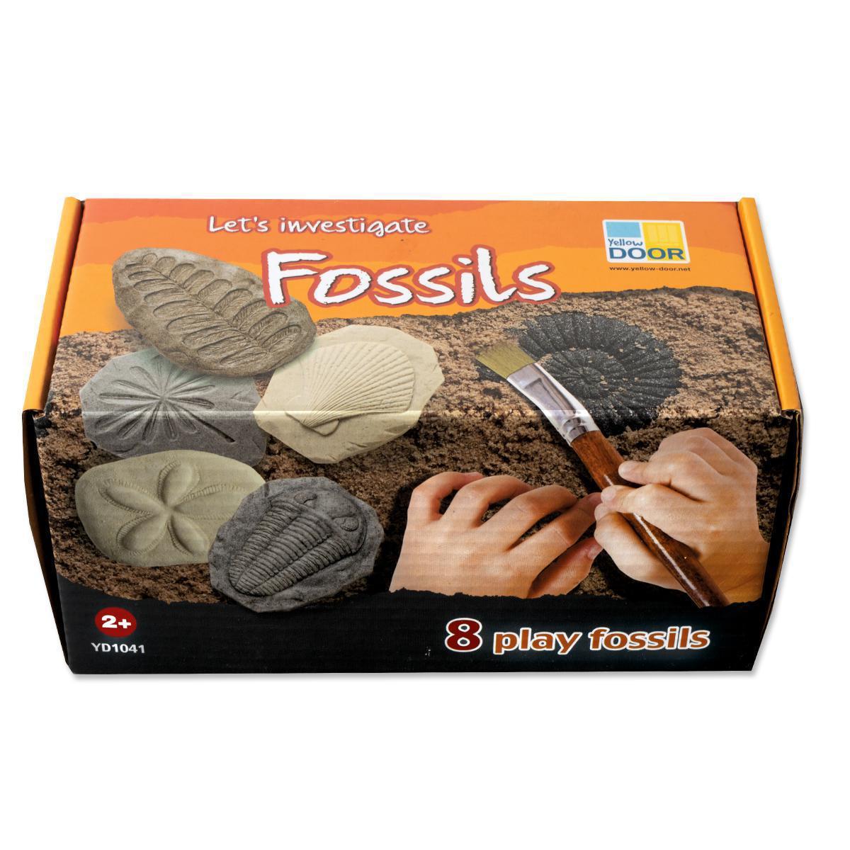 Enquête des fossiles