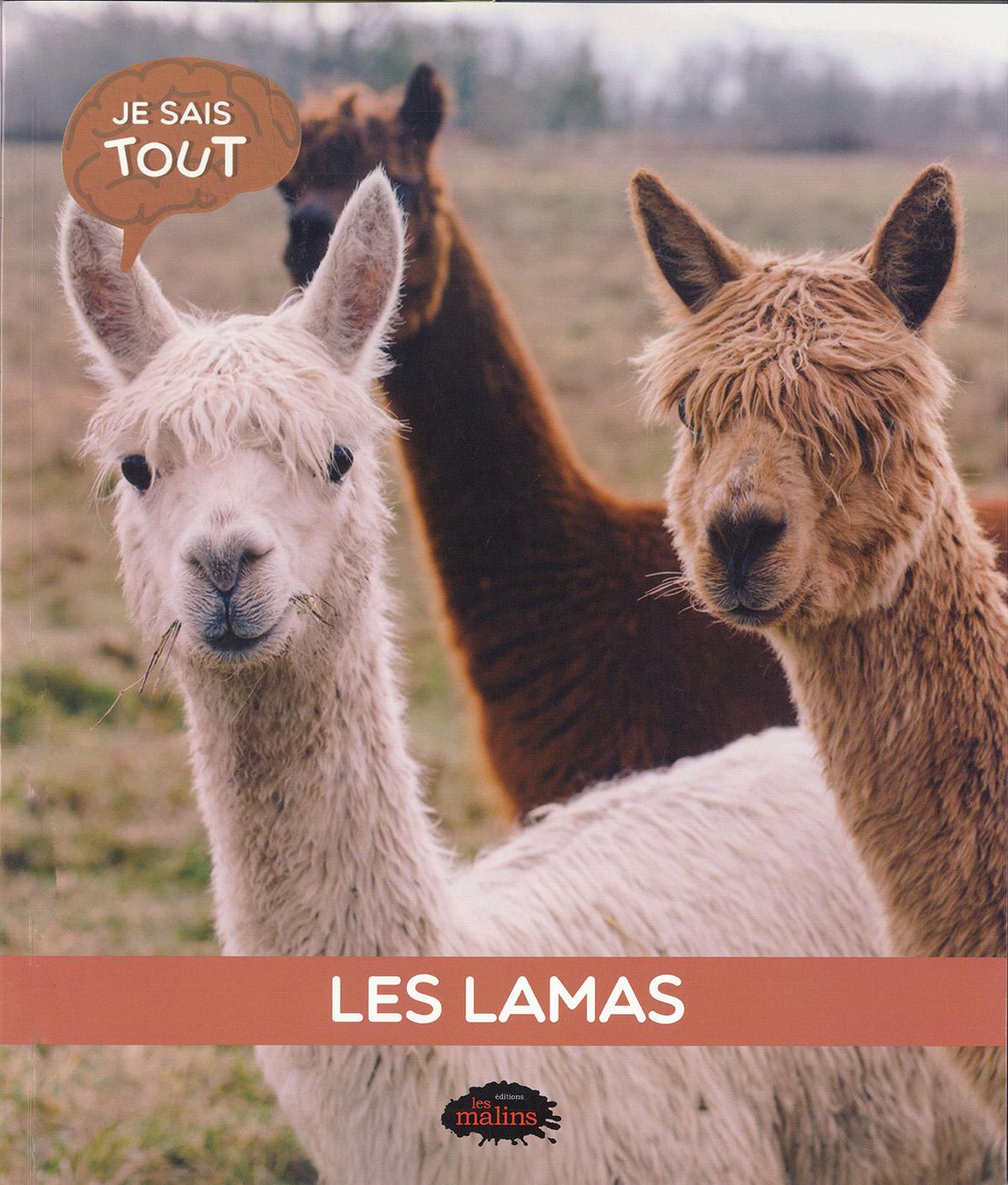 Je sais tout Les lamas